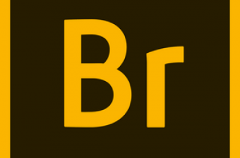 Adobe Bridge 2020 v10.1.1.166 Pre-activated