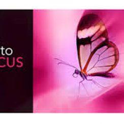 InPixio Photo Focus Pro 4.10.7412.27810 With Crack [Latest] Free Download